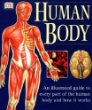Human Body : An Illustrated Guide to Every Part of the Human Body and How It Works
